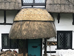 Thatch Roof Maintenance Thumbnail
